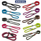 Ancol SLIP Lead Rope Dog Training Strong Nylon Show Halter Control Obedience