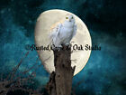 Snowy Owl On Stump with Moon Signed Original Handmade Matted Photo Picture A141