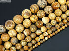 Natural Picture Jasper Gemstone Round Beads 16'' 2mm 4mm 6mm 8mm 10mm 12mm 14mm