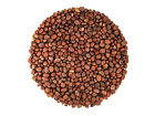 Food To Live ® RADISH SEEDS (1 to 25 Lbs) - Sproutable