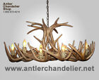 REPRODUCTION ANTLER WHITETAIL DEER OVAL CHANDELIER, RUSTIC LAMPS, CRS-4