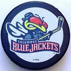 Sherwood NHL Team Basic Logo Ice Hockey Pucks