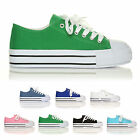 LACE UP PUMPS FOR GIRLS LADIES AND BOYS HI TOP FLAT CANVAS TRAINERS SHOES SIZE'S