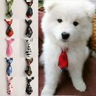 Adjustable Grooming Necktie Puppy Kitten Adorable Bow Tie For Dog Cat Pet CNOT