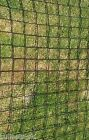 SM TRELLIS garden plant support scrog car trailer pond safety netting ByTheMetre