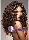 "14-22"" Afro Kinky Curl Full Front Lace Wigs 100% Remy Human Hair Density 150%"