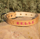 TAN 1 inch LEATHER DOG COLLAR Personalized Pet Name,  Opt Phone # with Paw Prints