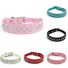 Dog Pubby Cat Collars Buckle Shiny Rhinestones Crystal Diamante Leather