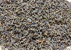 SUPERB FINEST FRENCH PROVENCE DRIED LAVENDER,DELIGHTFUL FRESH,UK SELLER