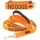 Dog Pet Collar Leash Color Coded Orange NO DOGS Not Good With Other Dogs Warning