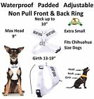 Harness Color Coded DEAF DOG Padded Waterproof New Walking Safety Assist Alert
