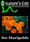 MARIGOLD PLANTS SEEDS, WORM CASTING CONCENTRATE FERTILIZER ORGANIC