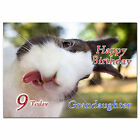 690; Special Personalised Birthday card; Funny Cheeky rabbit; Any age, name