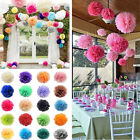 "10pcs 6"" 8"" 10"" 12"" 14"" Tissue Paper Pom Poms Flowers Balls Wedding Party Decor"
