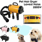 2800W Pet Hairdryer Dog Grooming Hair Dryer Cat Blower Heater Blaster or Stand