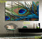 PEACOCK FEATHER 5 panel mounted fiberboard canvas wall art/surpassed stretched