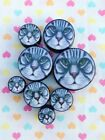 Pair of Cute Cat Face Ear Plugs Tunnels Gauges- 6mm - 25mm