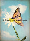 Monarch Butterfly on Daisy Matted Picture Home Wall Art Interior Room Decor A246