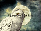 Snowy Owl against Full Moon Original Signed Matted Handmade Picture Photo A369