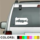 Pennsylvania Catfish Fishing decal sticker fish cat noodling boat lure bait pa