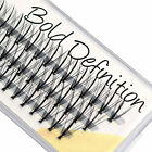 EyeEnvy Bold Definition Individual Lashes Express Eyelash Extensions 8 10 12