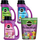 MIRACLE-GRO FLOWER MAGIC RANGE COLOURFUL PLANT GROWING WILD SEEDS 4 COLOUR MIXES