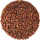 Food To Live ® Certified Organic Radish Seeds for Sprouting (1 to 55 Lbs)