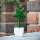Artificial Star Potted Plant Bonzai Succulent Home Office Table Decor Wedding