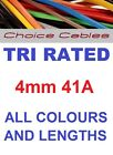 4mm 41 Amp 12v 240v Tri Rated Cable Auto Wire, Car Automotive Marine Solar Loom
