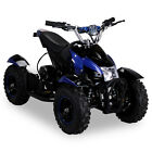 Elektro Quad Miniquad Kinder Atv Cobra 800 Watt Pocketquad Kinderquad Pocketbike