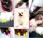 Dog and Cat Nail Sets Of Pet Scratch Proof Dog Nail Care Pet Supplies Claw Care