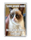 """""""Some people need a kiss around..."""" Funny and humour Quotes Fridge magnet Gifts"""