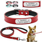 Leather Custom Dog Collar  Leash Set ID Tags Personalized Pet Collars Name Free
