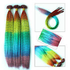 12s/50s/100s Rainbow Color Gradient Synthetic Rooster Feather Hair Extensions