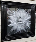 New Black & white flower pictures with liquid art, crystals & black step frames
