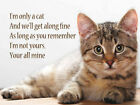 I'M ONLY A CAT AND WE'LL GET ALONG FINE METAL PLAQUE SIGN CAT BREEDS LISTED 450