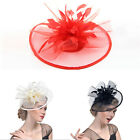Fashion Hat Clip Fascinator Large Headband Wedding Ladies Day Race Royal Gift