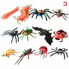 12 Pcs Set Spider Animal Figures Toy Collection Models Simulation Insect Bug