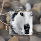 SIBERIAN WOLF DOG GLASS TILE PENDANT NECKLACE KEYCHAIN