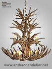 REPRODUCTION ANTLER WHITETAIL MULE DEER CHANDELIER,  12-16 LTS,  RUSTIC LAMP CRL-8