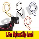 Leash Dog Slip Lead Rope Nylon Collar Training Pet Strap Adjustable Lead