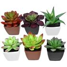 Artificial Potted Succulent Plants decorative accents on desks windowsills