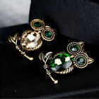 Vintage Rhinestone Crystal Owl Alloy Brooch Pin Clothes Accessories for Women