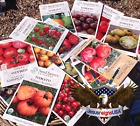 Tomato Seeds - Organic Preserved Heirlooms - Non Gmo Open Pollinated - 25 SEEDS