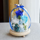 Glass Dome Bell Jar Decorative Cloche Display Wooden Base with Flower 4 Colors
