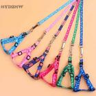 Nylon Small Dog Cat Collar and Leash 1.0cm Width Pet Harness Leads for Puppy Dog