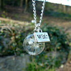 Dandelion seed necklace WISH flower globe necklace REAL seeds silver botanical