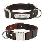 Heavy Duty Leather Dog Collars Personalized Nameplate with D-ring Engraved Free