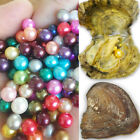 1PCS Oysters With 20 Rainbow Oval Pearls Inside Each Oyster Mini Monster Oyster