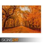 BEAUTIFUL AUTUMN LANDSCAPES (AD988) NATURE POSTER - Poster Print Art A0 A1 A2 A3